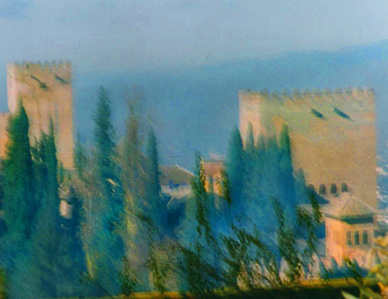 Alhambra profile with cypresses