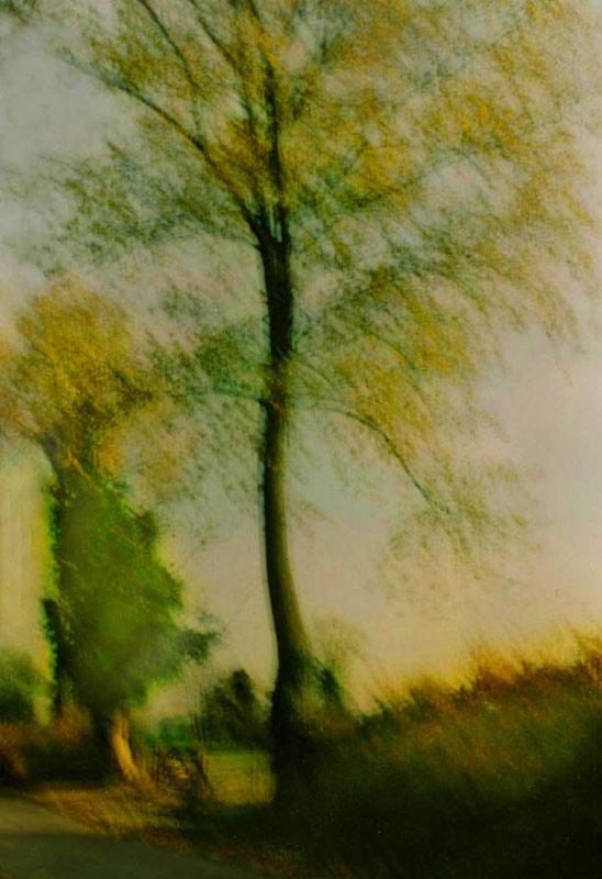 Rural scene, Lincolnshire