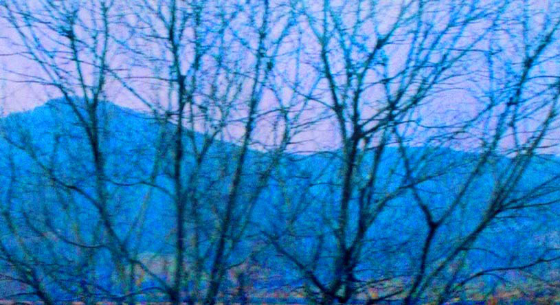 Blue hills, and trees