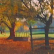 English deer-park