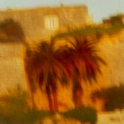 home page thumbnail Palms, Mdina walls, late sun