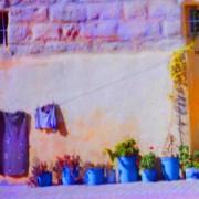 Street garden, blue pots